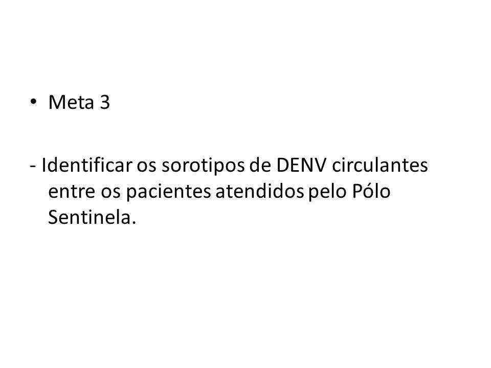 Meta 3- Identificar os sorotipos de DENV circulantes entre os pacientes atendidos pelo Pólo Sentinela.