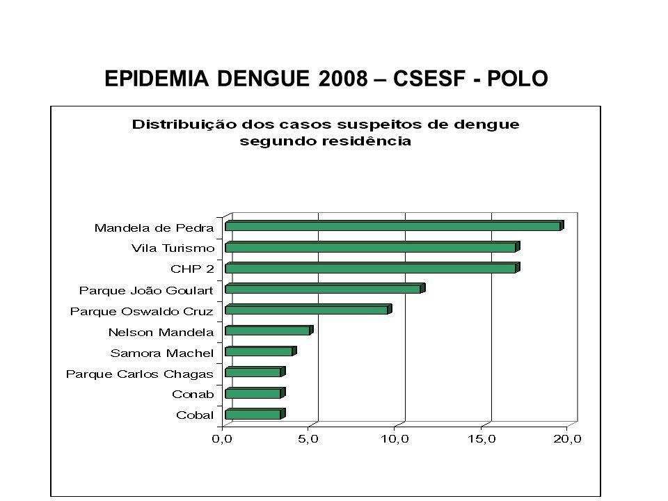 EPIDEMIA DENGUE 2008 – CSESF - POLO