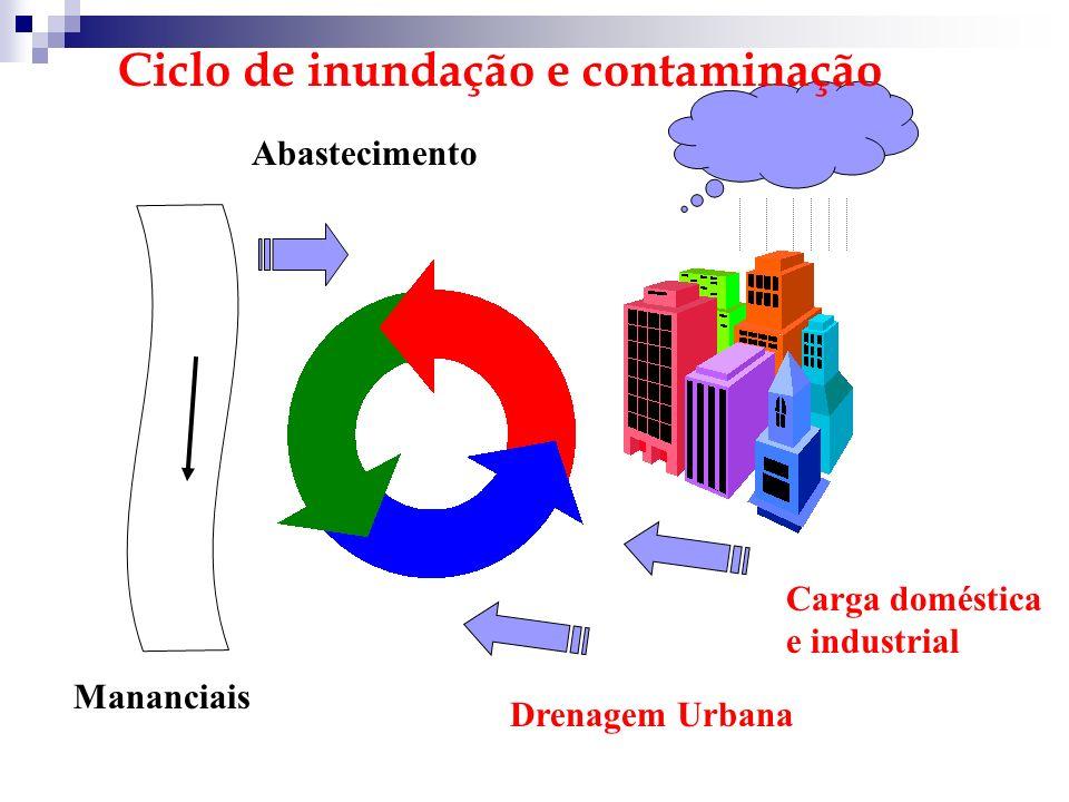 Ciclo de inundação e contaminação