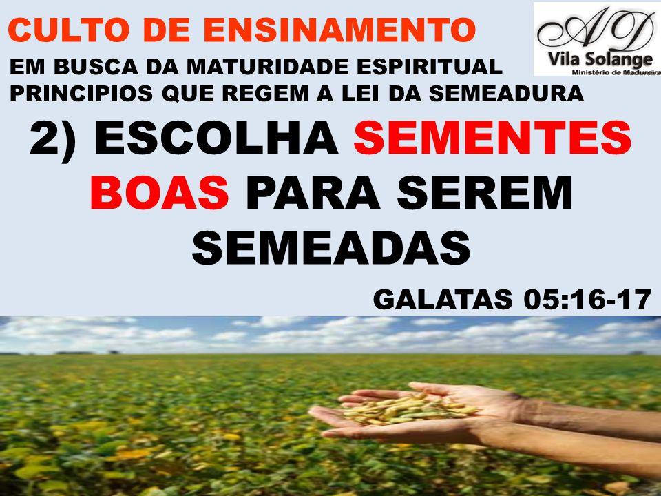 2) ESCOLHA SEMENTES BOAS PARA SEREM SEMEADAS