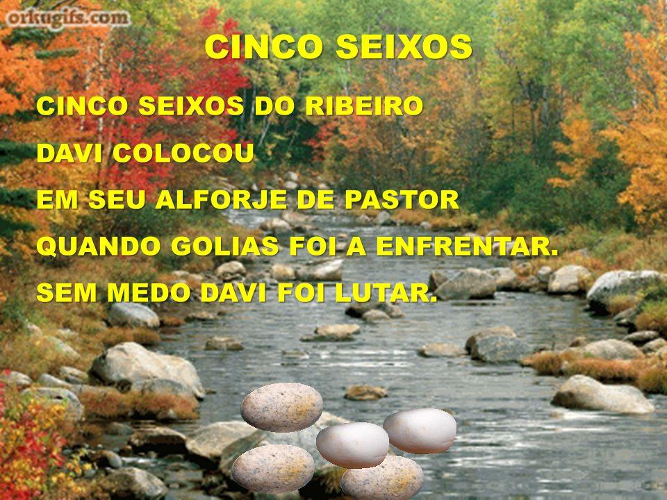 CINCO SEIXOS CINCO SEIXOS DO RIBEIRO DAVI COLOCOU