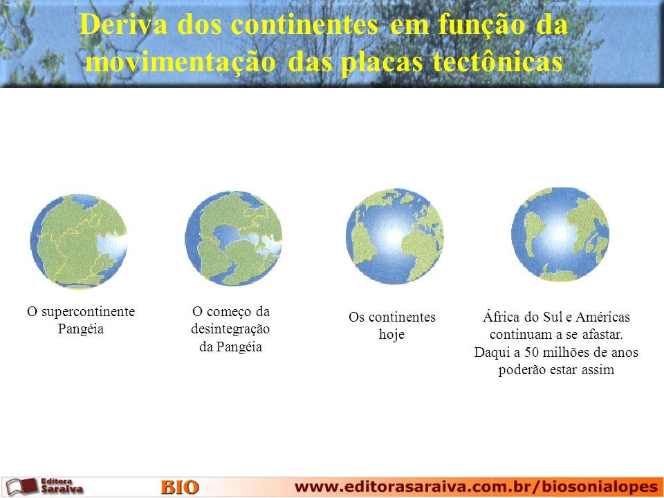 Deriva dos continentes em função da movimentação das placas tectônicas
