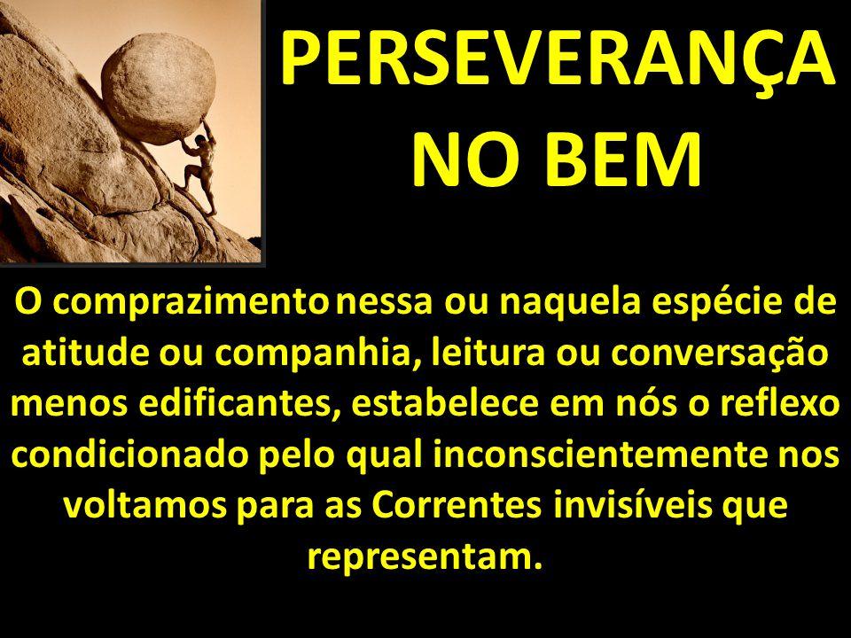 PERSEVERANÇA NO BEM