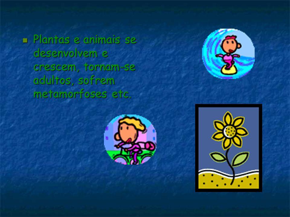 Plantas e animais se desenvolvem e crescem, tornam-se adultos, sofrem metamorfoses etc.
