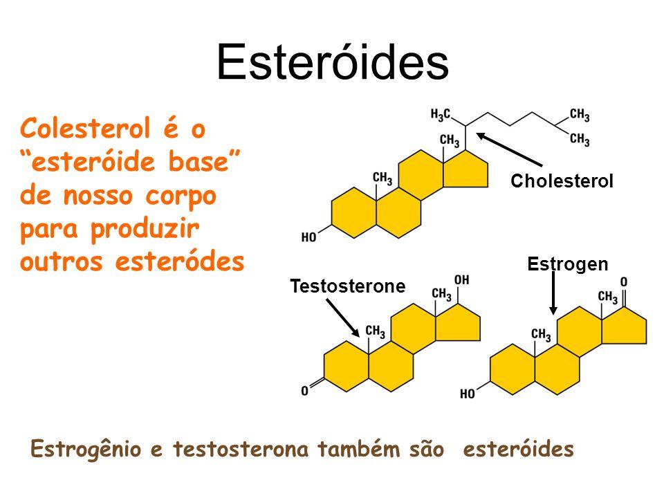 Esteróides Colesterol é o esteróide base de nosso corpo para produzir outros esteródes. Cholesterol.