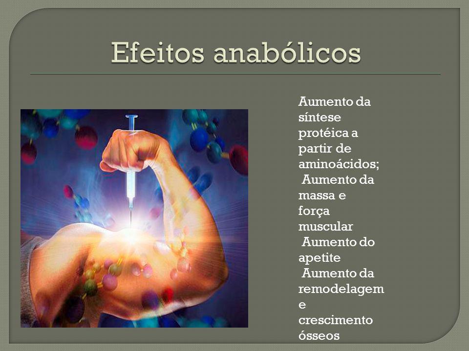 Efeitos anabólicos Aumento da síntese protéica a partir de