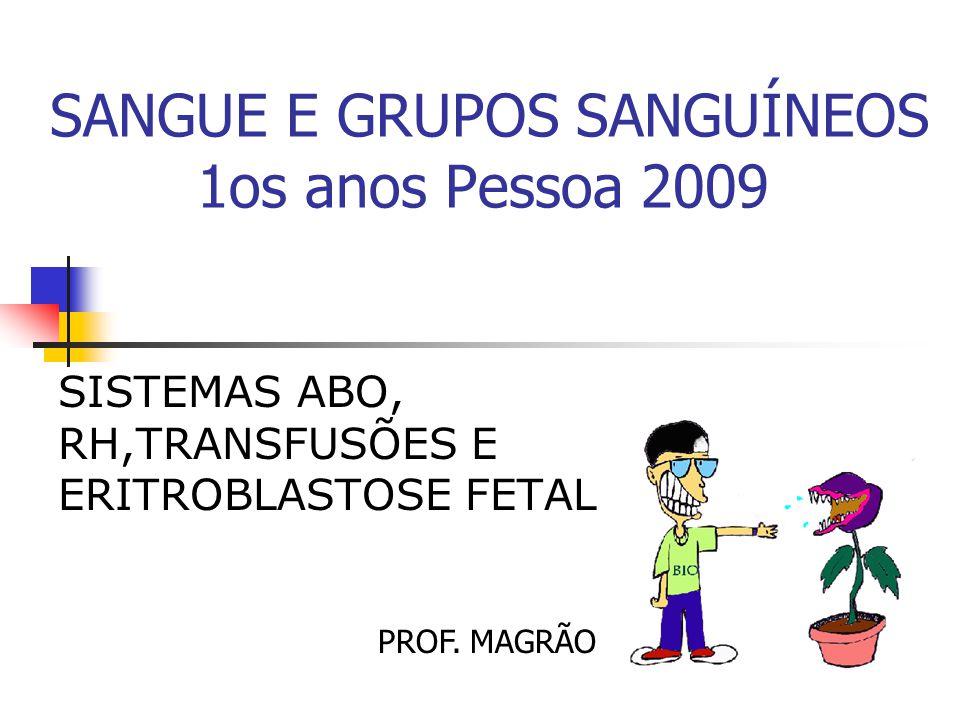 SANGUE E GRUPOS SANGUÍNEOS 1os anos Pessoa 2009