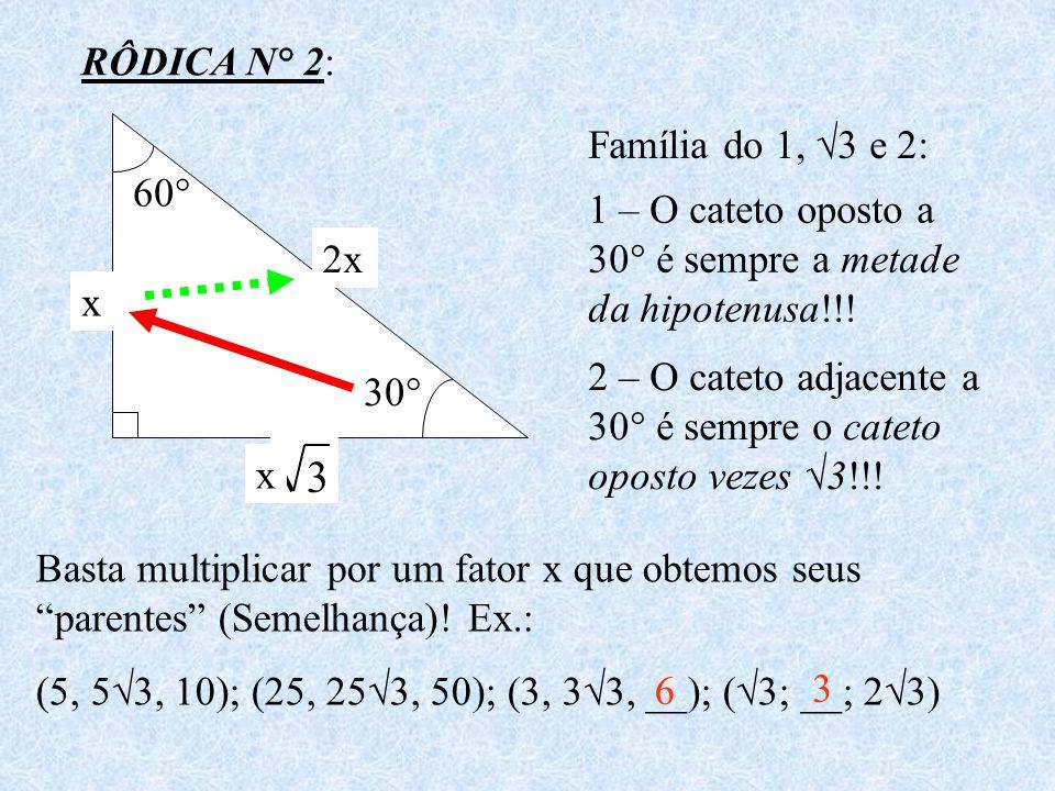 3 3 RÔDICA N° 2: Família do 1, √3 e 2: 60°
