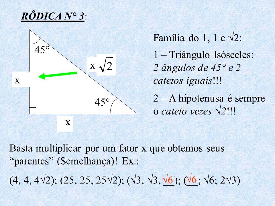 2 RÔDICA N° 3: Família do 1, 1 e √2: 45°