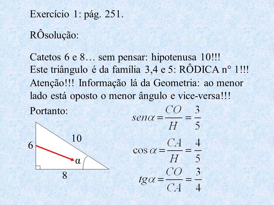 Exercício 1: pág. 251. RÔsolução: Catetos 6 e 8… sem pensar: hipotenusa 10!!! Este triângulo é da família 3,4 e 5: RÔDICA n° 1!!!
