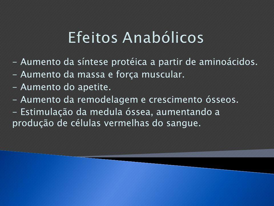 Efeitos Anabólicos - Aumento da síntese protéica a partir de aminoácidos. - Aumento da massa e força muscular.
