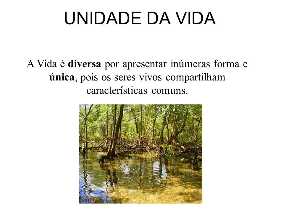 UNIDADE DA VIDA A Vida é diversa por apresentar inúmeras forma e única, pois os seres vivos compartilham características comuns.