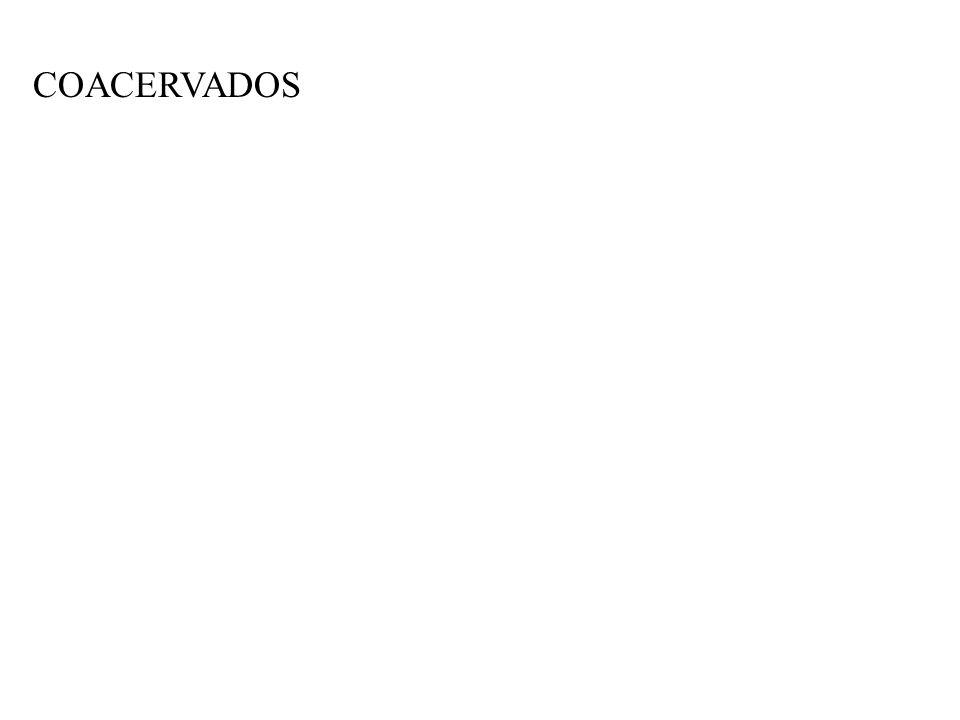 COACERVADOS