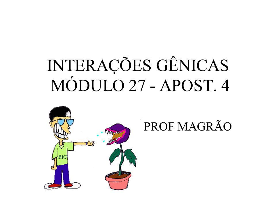 INTERAÇÕES GÊNICAS MÓDULO 27 - APOST. 4