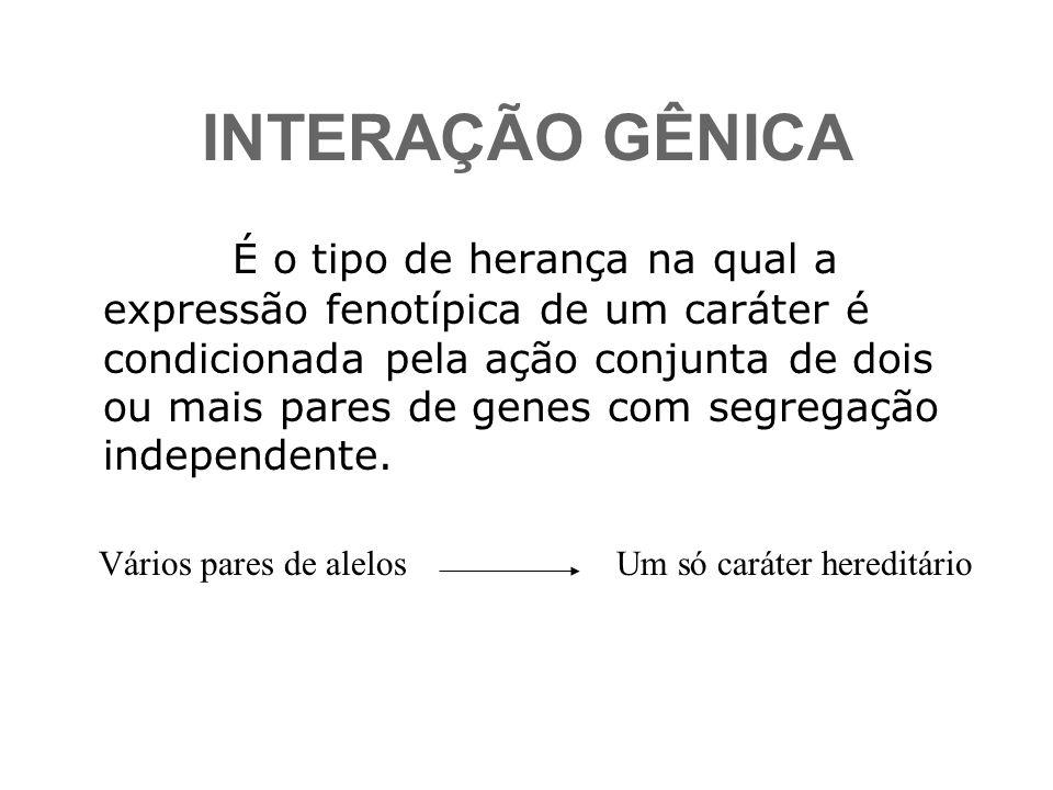 INTERAÇÃO GÊNICA