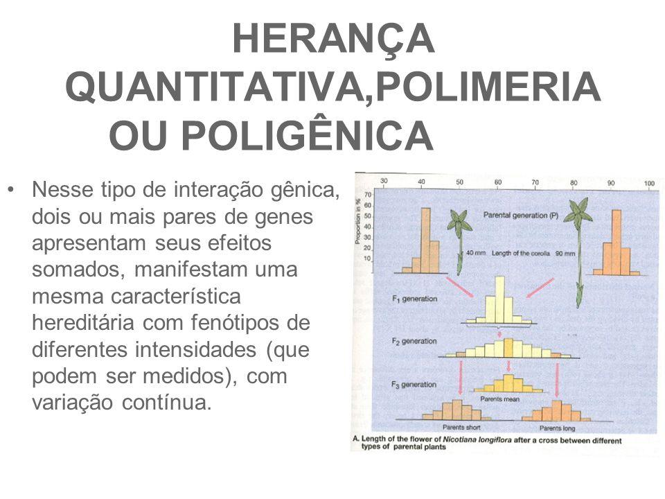HERANÇA QUANTITATIVA,POLIMERIA OU POLIGÊNICA