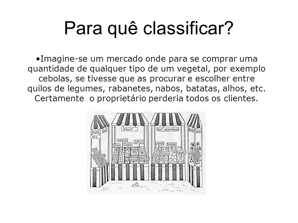 Para quê classificar
