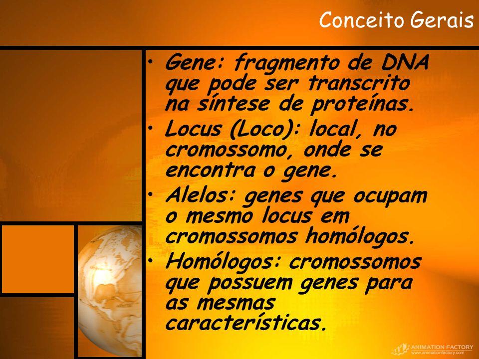 Conceito Gerais Gene: fragmento de DNA que pode ser transcrito na síntese de proteínas. Locus (Loco): local, no cromossomo, onde se encontra o gene.