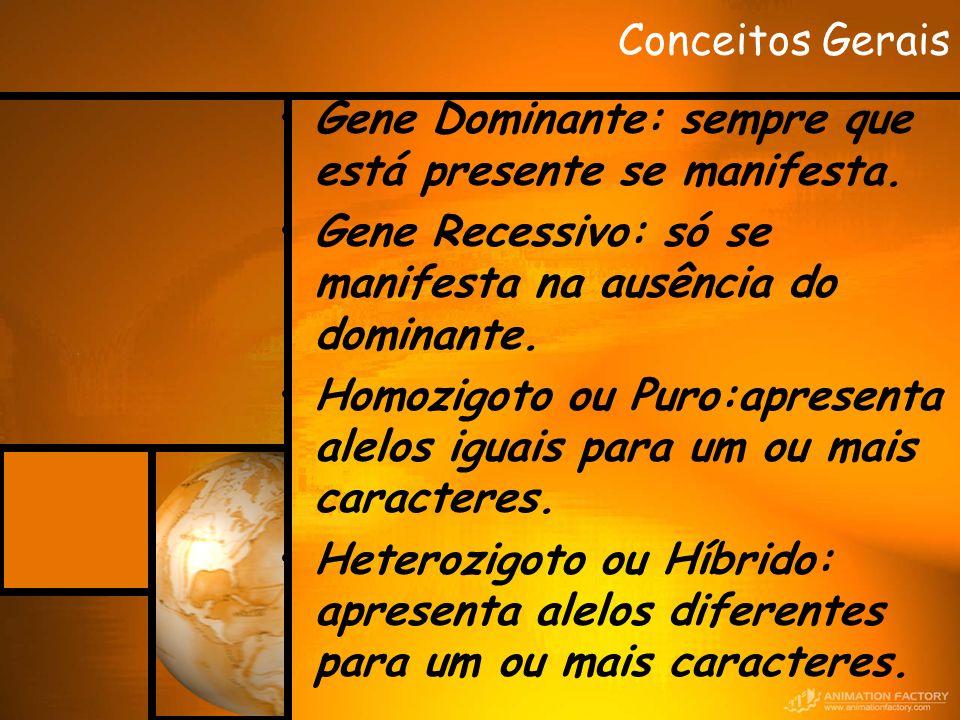 Conceitos Gerais Gene Dominante: sempre que está presente se manifesta. Gene Recessivo: só se manifesta na ausência do dominante.