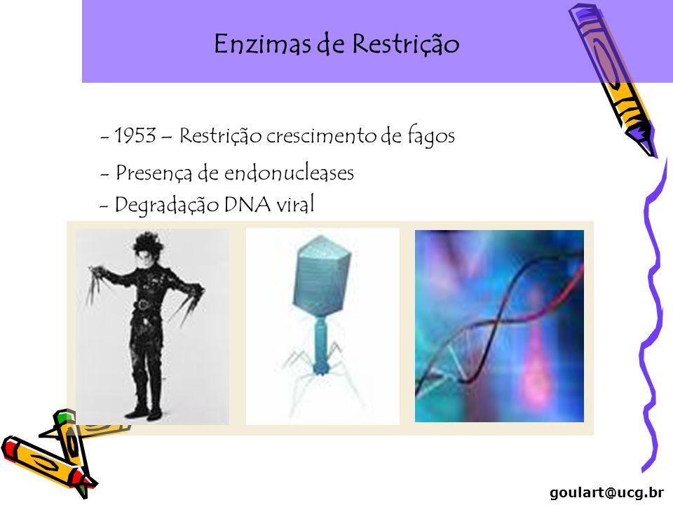 Enzimas de Restrição - 1953 – Restrição crescimento de fagos