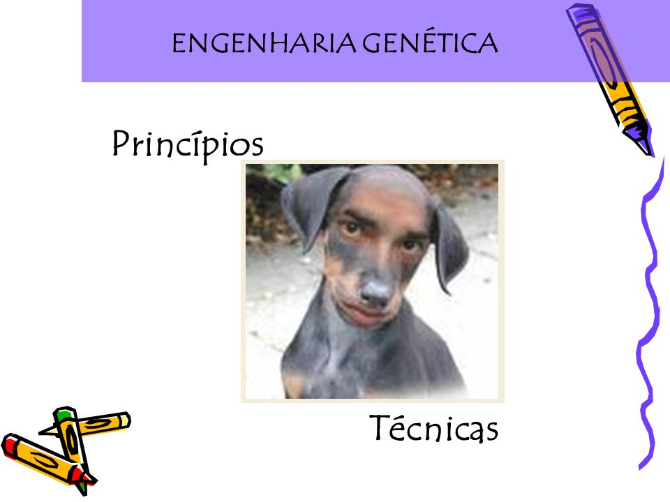 ENGENHARIA GENÉTICA Princípios Técnicas
