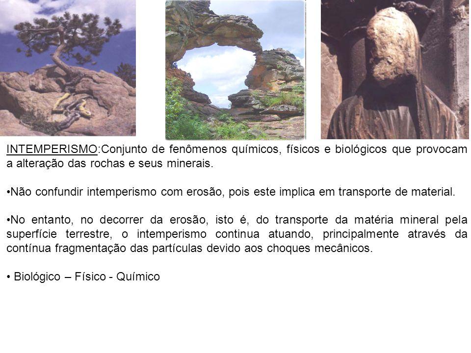 INTEMPERISMO:Conjunto de fenômenos químicos, físicos e biológicos que provocam a alteração das rochas e seus minerais.