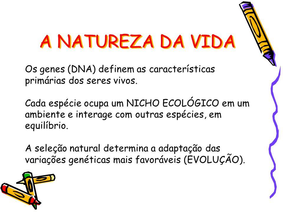 A NATUREZA DA VIDA Os genes (DNA) definem as características primárias dos seres vivos.