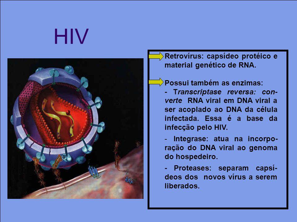 HIV Retrovírus: capsídeo protéico e material genético de RNA.