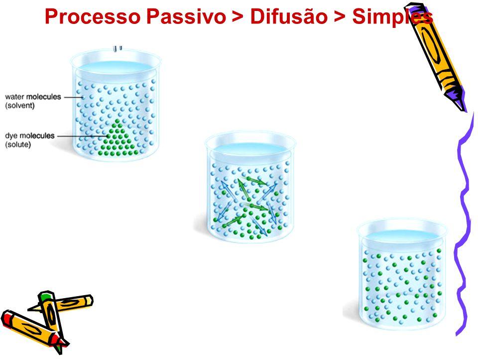 Processo Passivo > Difusão > Simples