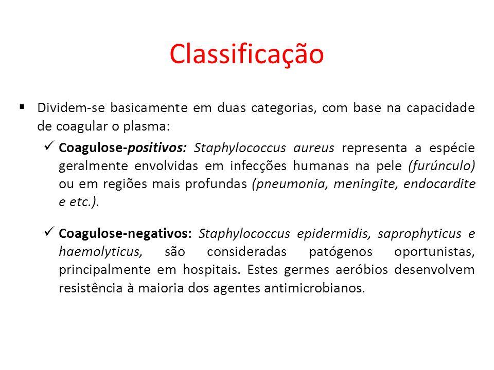 Classificação Dividem-se basicamente em duas categorias, com base na capacidade de coagular o plasma: