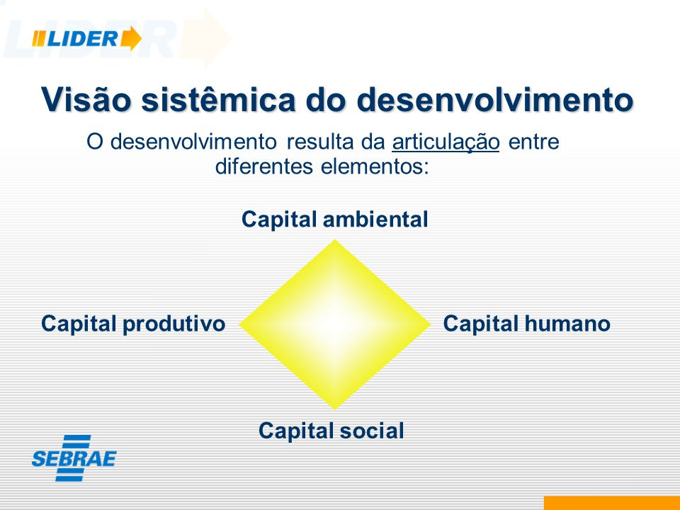 Visão sistêmica do desenvolvimento