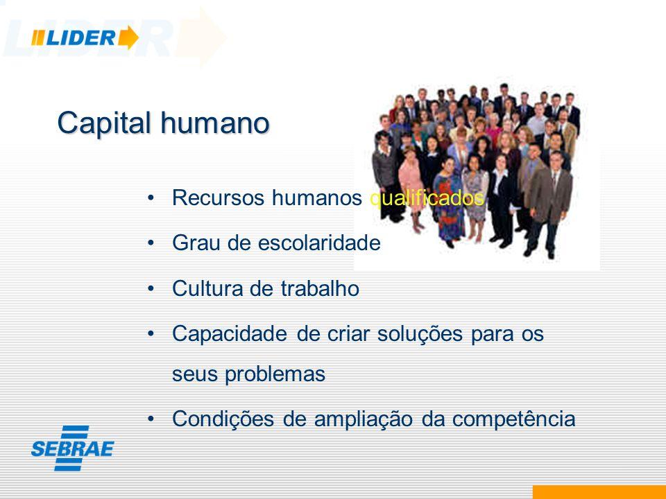 Capital humano Recursos humanos qualificados Grau de escolaridade