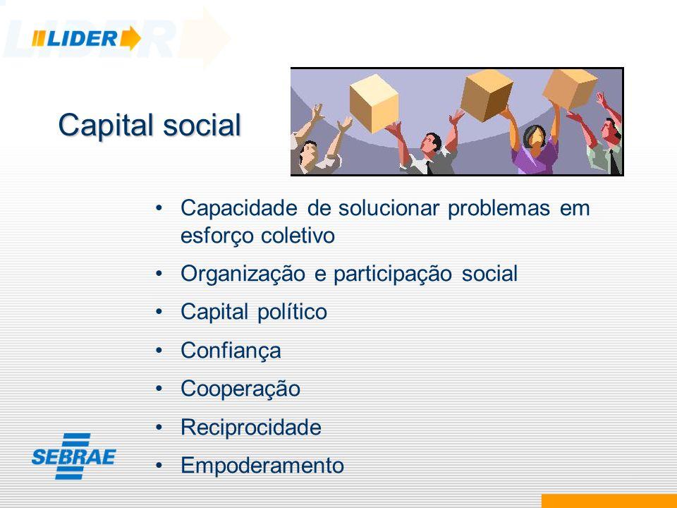 Capital social Capacidade de solucionar problemas em esforço coletivo