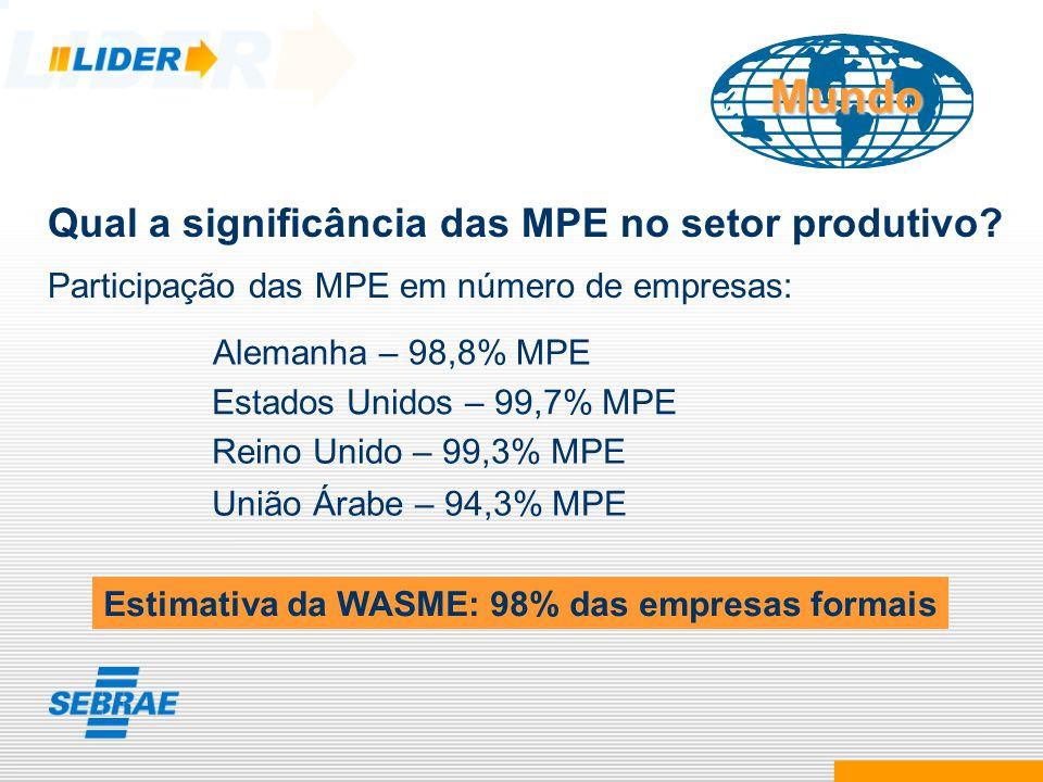 Mundo Qual a significância das MPE no setor produtivo