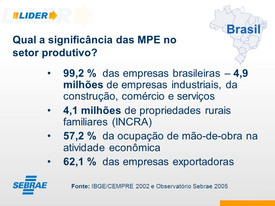Brasil Qual a significância das MPE no setor produtivo