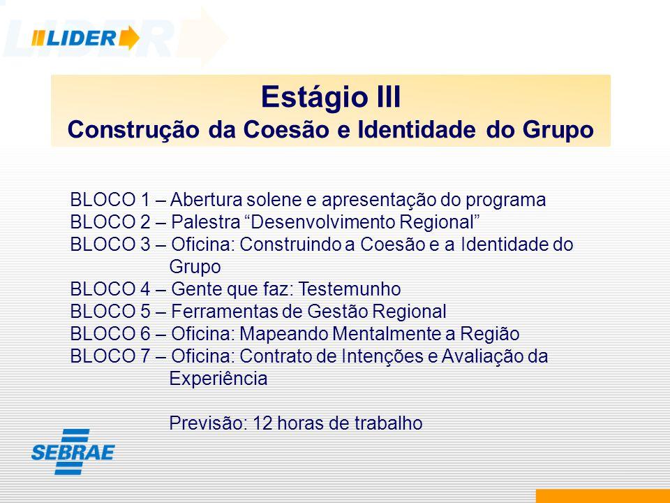 Construção da Coesão e Identidade do Grupo