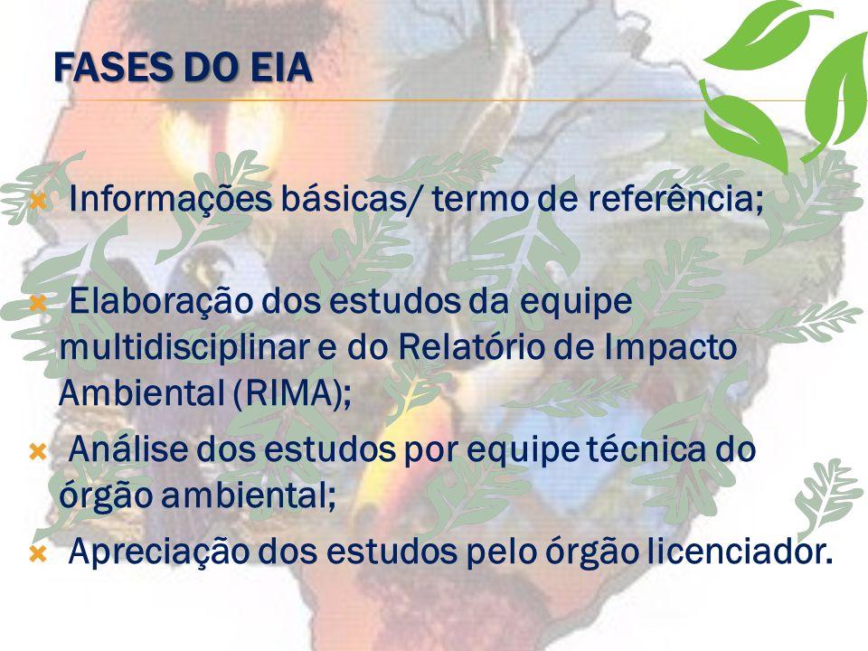 Fases do EIA Informações básicas/ termo de referência;