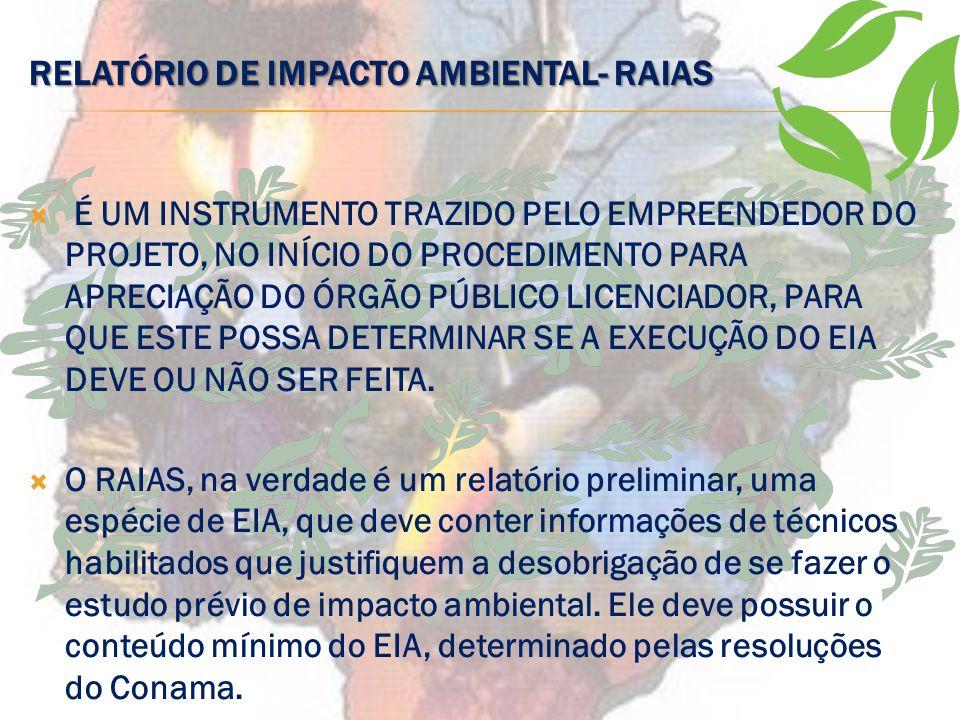 RELATÓRIO DE IMPACTO AMBIENTAL- RAIAS