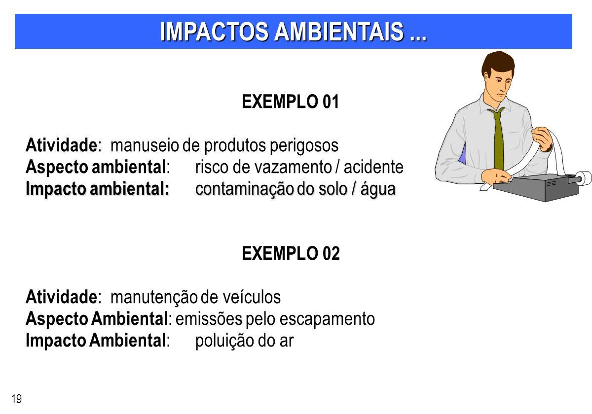 IMPACTOS AMBIENTAIS ... EXEMPLO 01