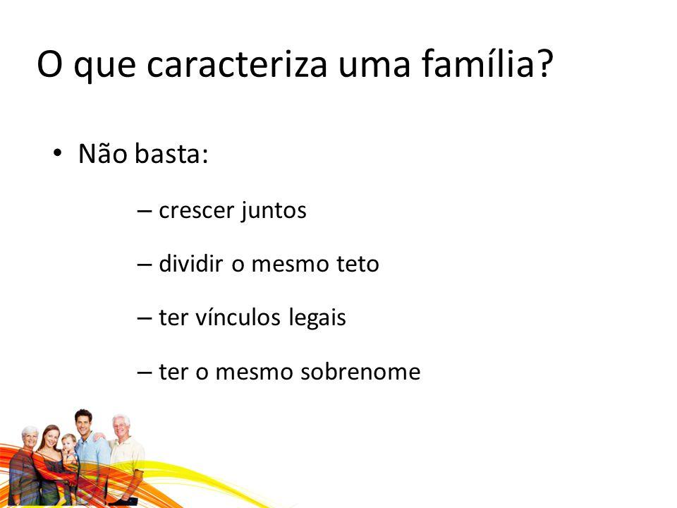 O que caracteriza uma família