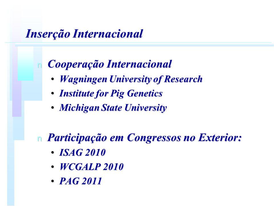 Inserção Internacional