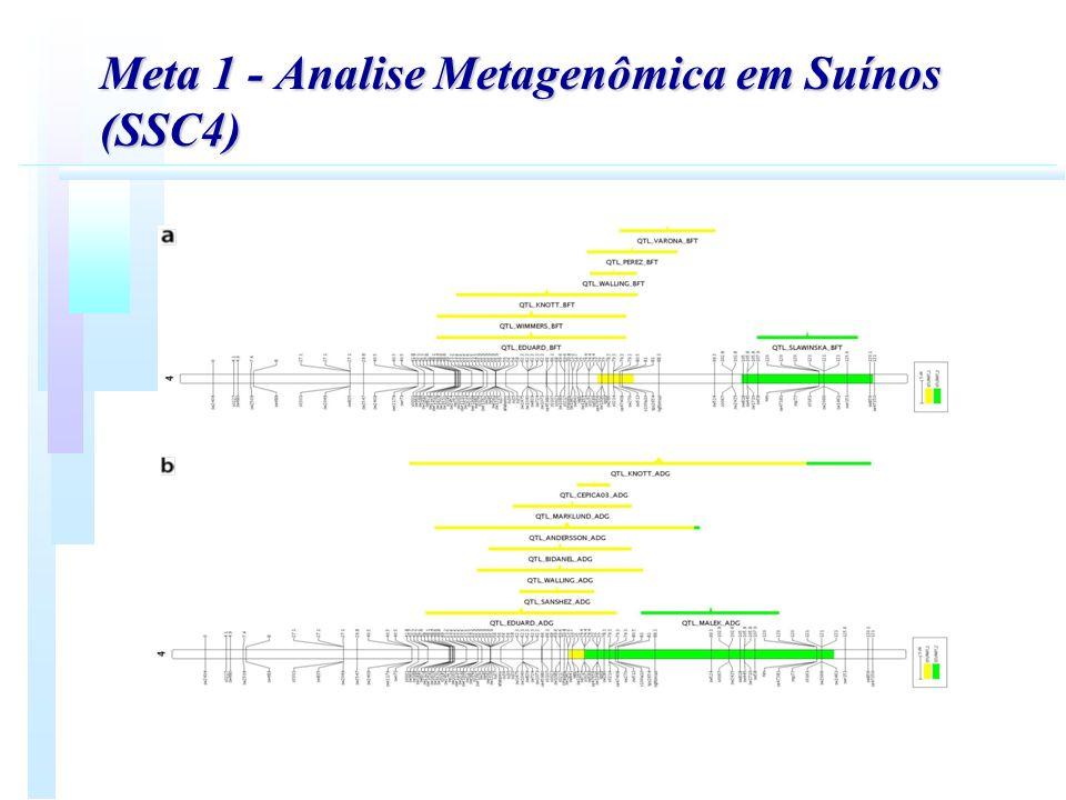 Meta 1 - Analise Metagenômica em Suínos (SSC4)