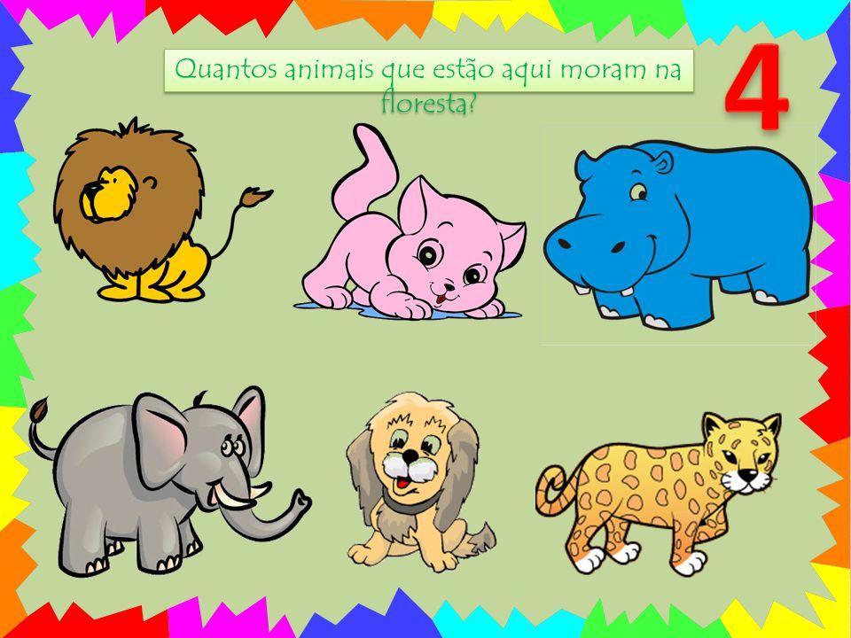 Quantos animais que estão aqui moram na floresta