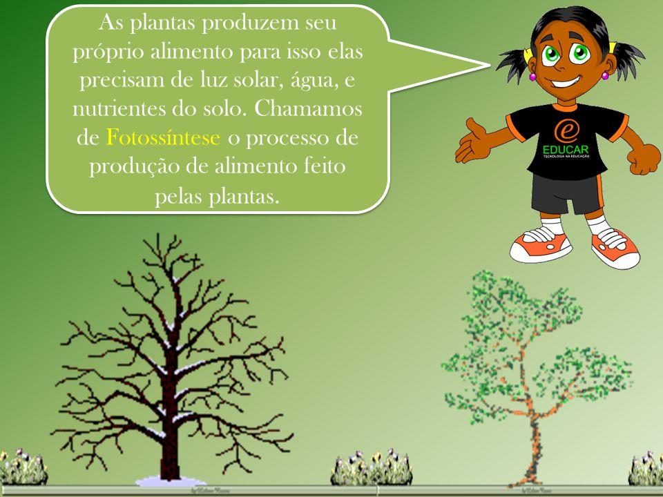 As plantas produzem seu próprio alimento para isso elas precisam de luz solar, água, e nutrientes do solo.