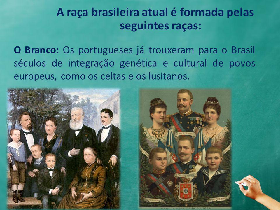 A raça brasileira atual é formada pelas seguintes raças:
