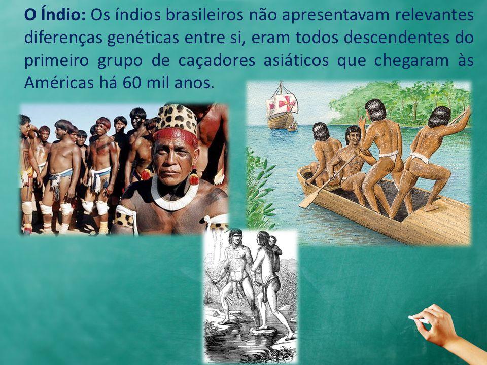 O Índio: Os índios brasileiros não apresentavam relevantes diferenças genéticas entre si, eram todos descendentes do primeiro grupo de caçadores asiáticos que chegaram às Américas há 60 mil anos.