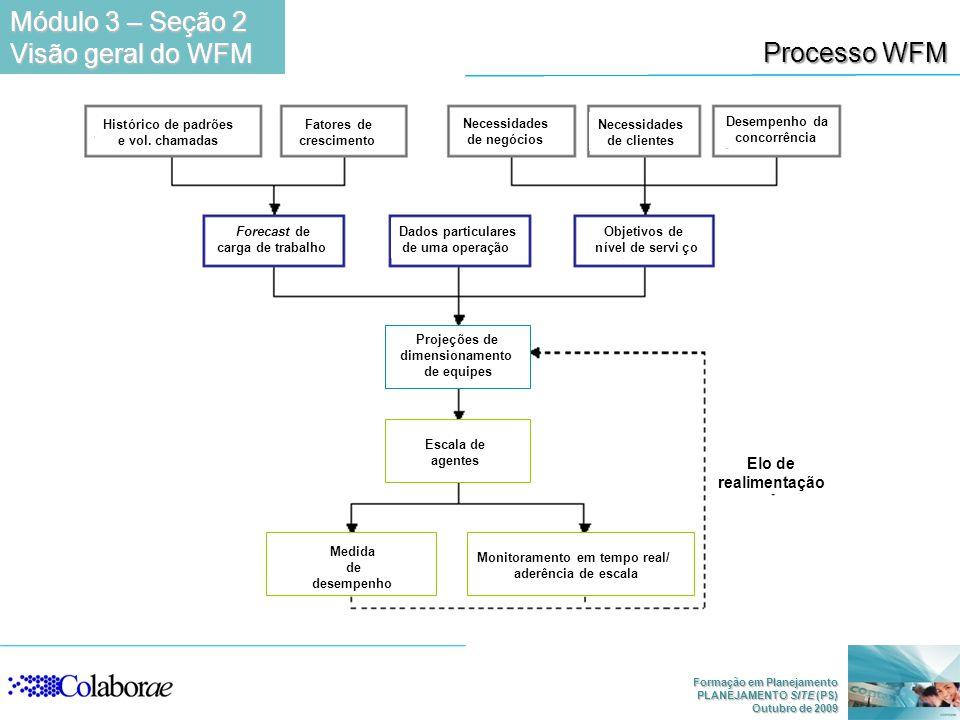 Módulo 3 – Seção 2 Visão geral do WFM Processo WFM Elo de Realimenta