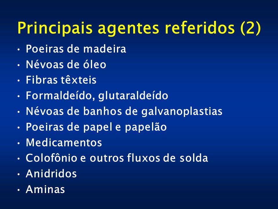 Principais agentes referidos (2)