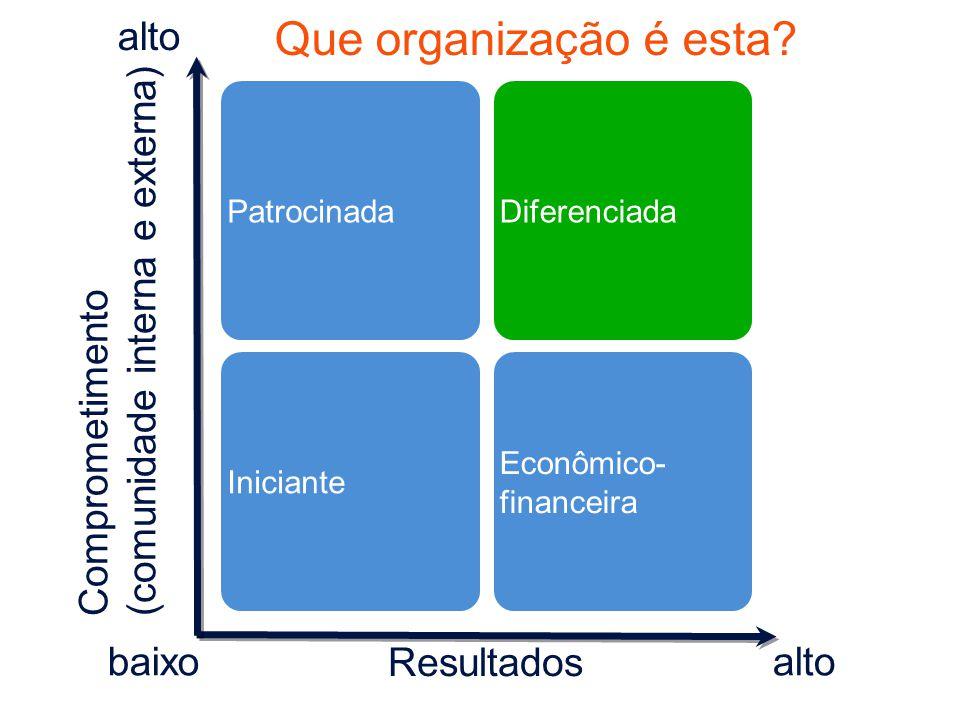Que organização é esta alto (comunidade interna e externa)