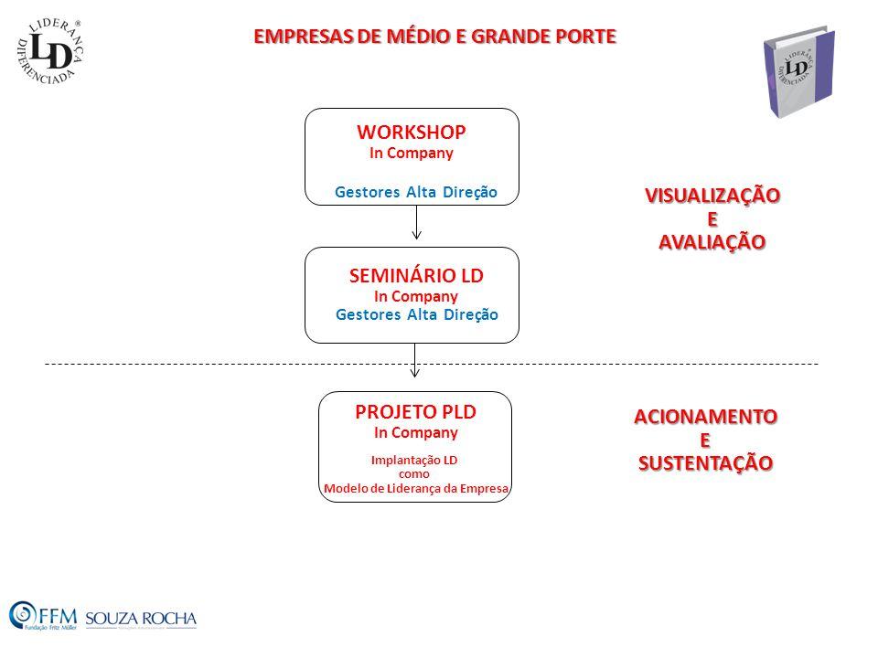 EMPRESAS DE MÉDIO E GRANDE PORTE Modelo de Liderança da Empresa